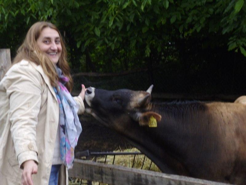 Щастлива крава